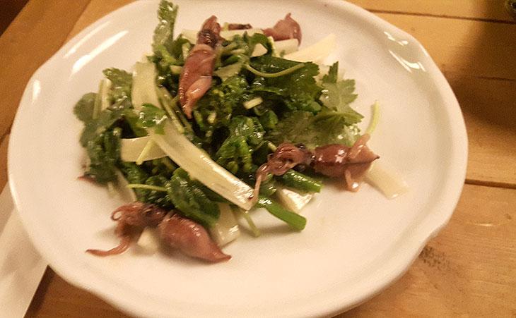 ホタルとイカの春野菜サラダ